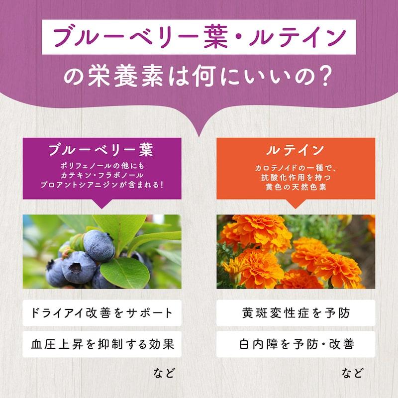 ブルーベリー葉とルテイン