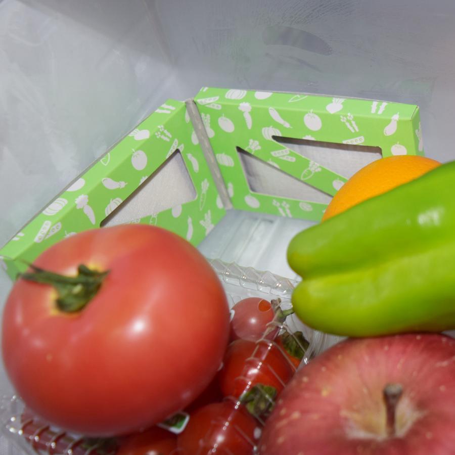 鮮度保持付き冷蔵庫用消臭剤 いきいきくん(g1/冷蔵庫 消臭 消臭剤/4935137804879)