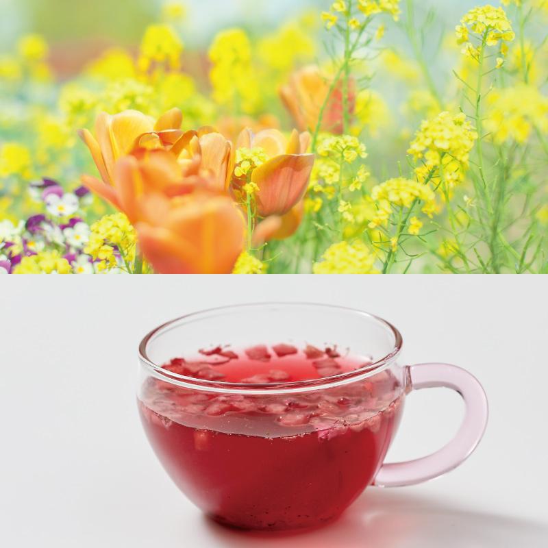 春風果実茶