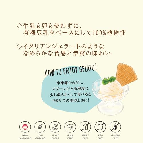 VEGAN オーガニックアイス スィートチョコレート 100ml 【クール便送料別途】rt