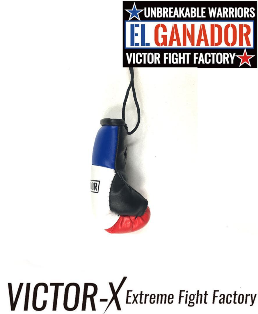 EL GANADOR エルガナドール ボクシンググローブマスコットおもちゃ