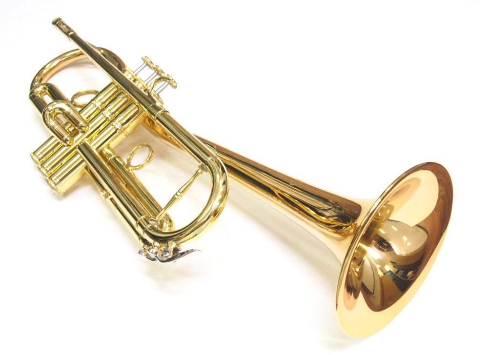 【国内初入荷!限定1本!】CarolBrass(キャロルブラス) N5000L ユーロベルモデル B♭トランペット