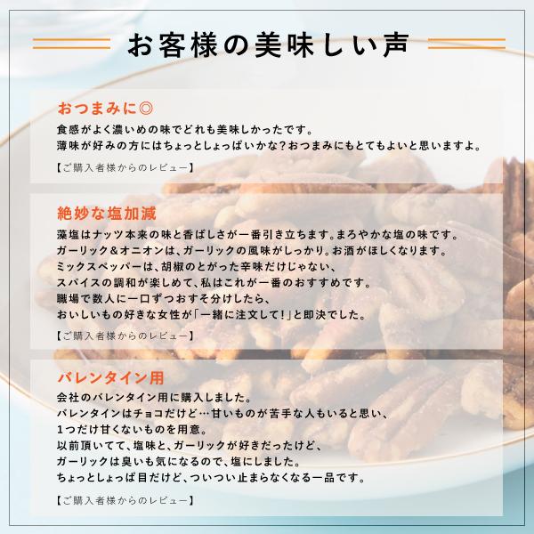 セイヴォリーペカンナッツ お徳用500g(瀬戸内の藻塩/4種のペッパーミックス/ガーリック&オニオン/柚子こしょう)【熨斗不可】