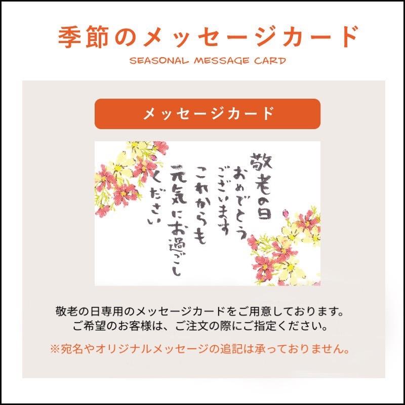 【敬老の日熨斗】和素材フルーツゼリー 6個入