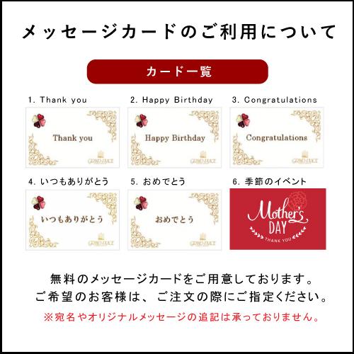 ペカンナッツショコラ 75g スタンドパック(白ごま)【季節限定】【熨斗不可】