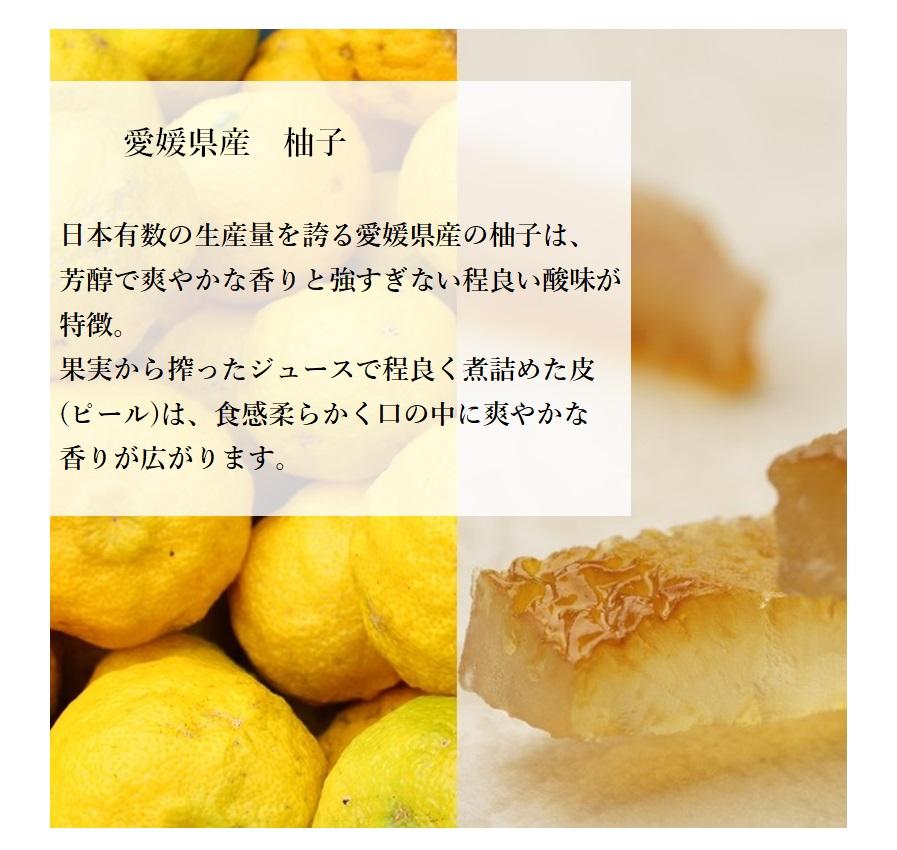 柚子ピールチョコ 70g【熨斗不可】