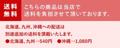 【送料無料(一部地域除く)】ペカンナッツショコラ ポーションアソート 24袋入