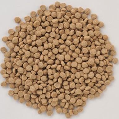 レジーム[ダイエット用](標準粒/1.1kg/4袋)