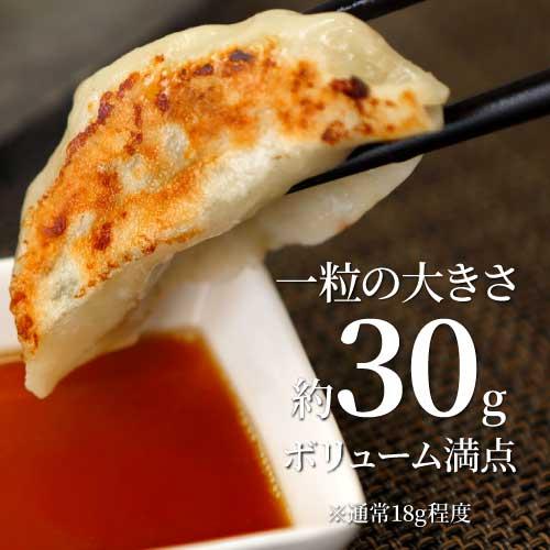音更宝永餃子600g 手造り冷凍特製餃子(約20個入)