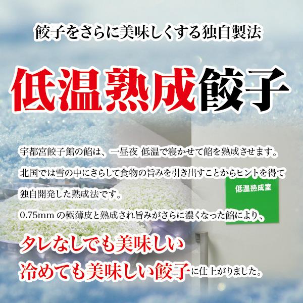 ニンニク0(ゼロ)舞ちゃん餃子セット(64個入)