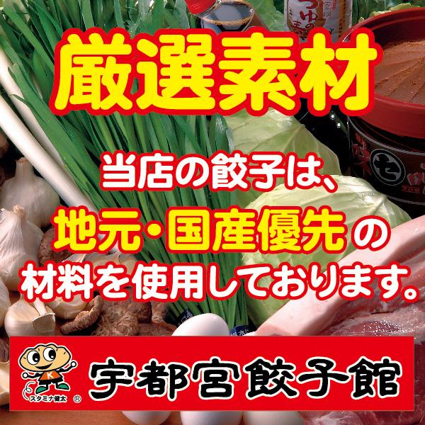 俺は健太派ギフトセット(健太餃子48個入)