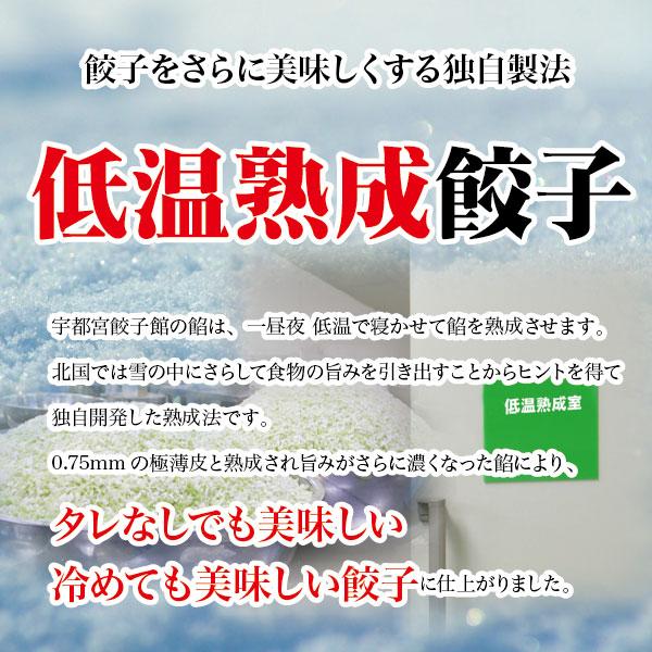 ホタテ餃子セット (24個) 期間数量限定 新商品2,100円の品