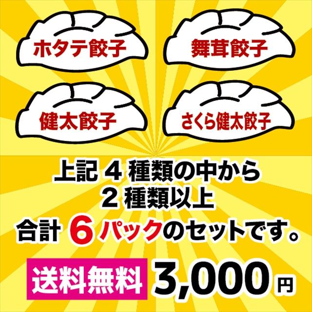 餃子福袋(48個入) 送料込み3,000円 限定60セット