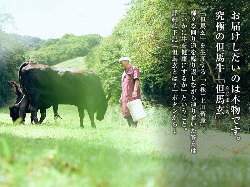 但馬玄/但馬牛 ハンバーグ(6個入り/150g×6)[ 贈り物 ]