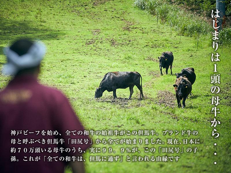 但馬玄/但馬牛 おまかせ焼肉セット 【 松 】 [ お家で ]