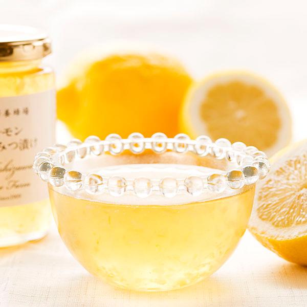 さわやかギフト(レモンはちみつ漬け&ハンガリー産アカシアはちみつ 化粧瓶入500g×2本)【母の日カード対応商品】