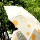 【SALE】【ネット限定】「Stump Umbrella」ドット柄のように木の年輪が描かれている遊び心あふれる8本骨の折りたたみ傘