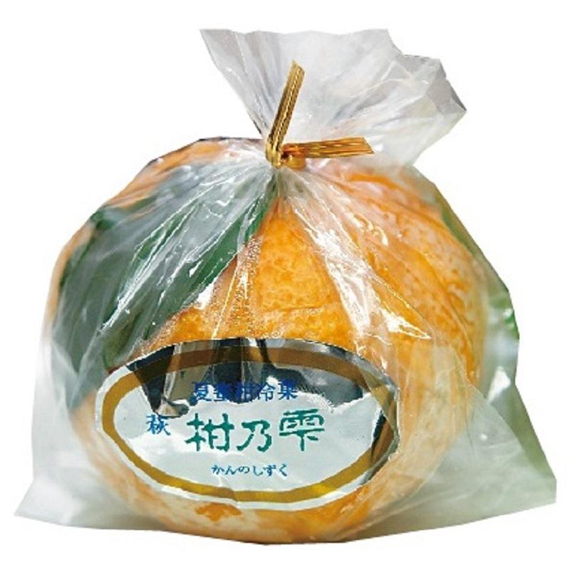 〈萩たけなか〉柑の雫 1個