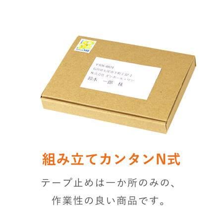 【定形外郵便用】ダンボール ケース A6 N式 厚さ2cm