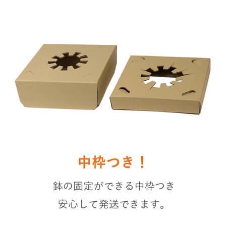 【宅配80サイズ】フラワーギフト 発送BOX(鉢押えセット)