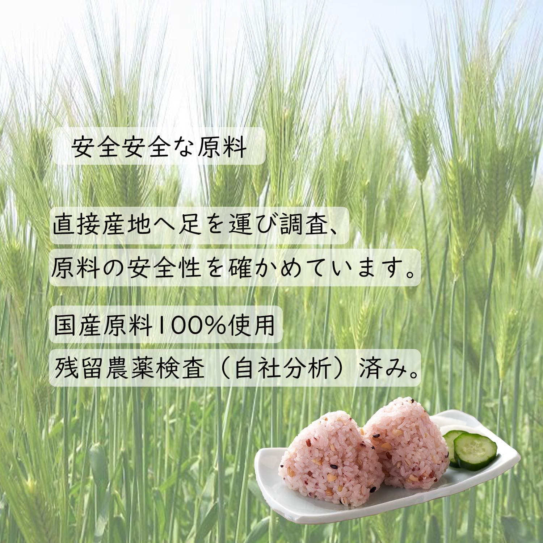 国産「発芽もち麦+16穀」 450g(30g×15)