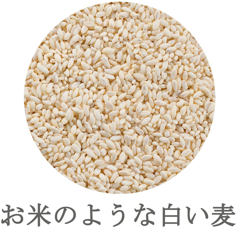 純麦 600g×8袋