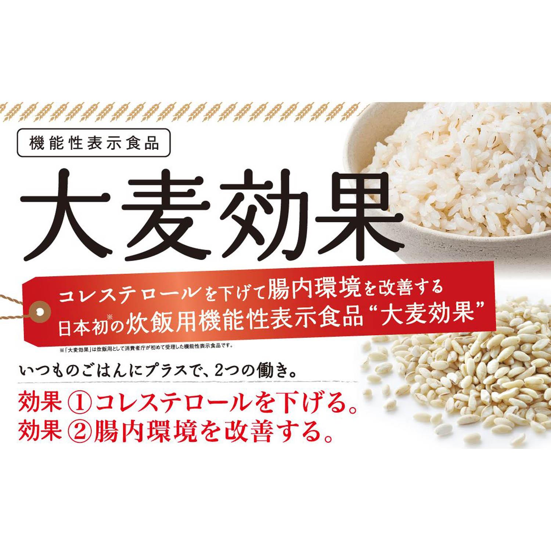 【定期購入】大麦効果
