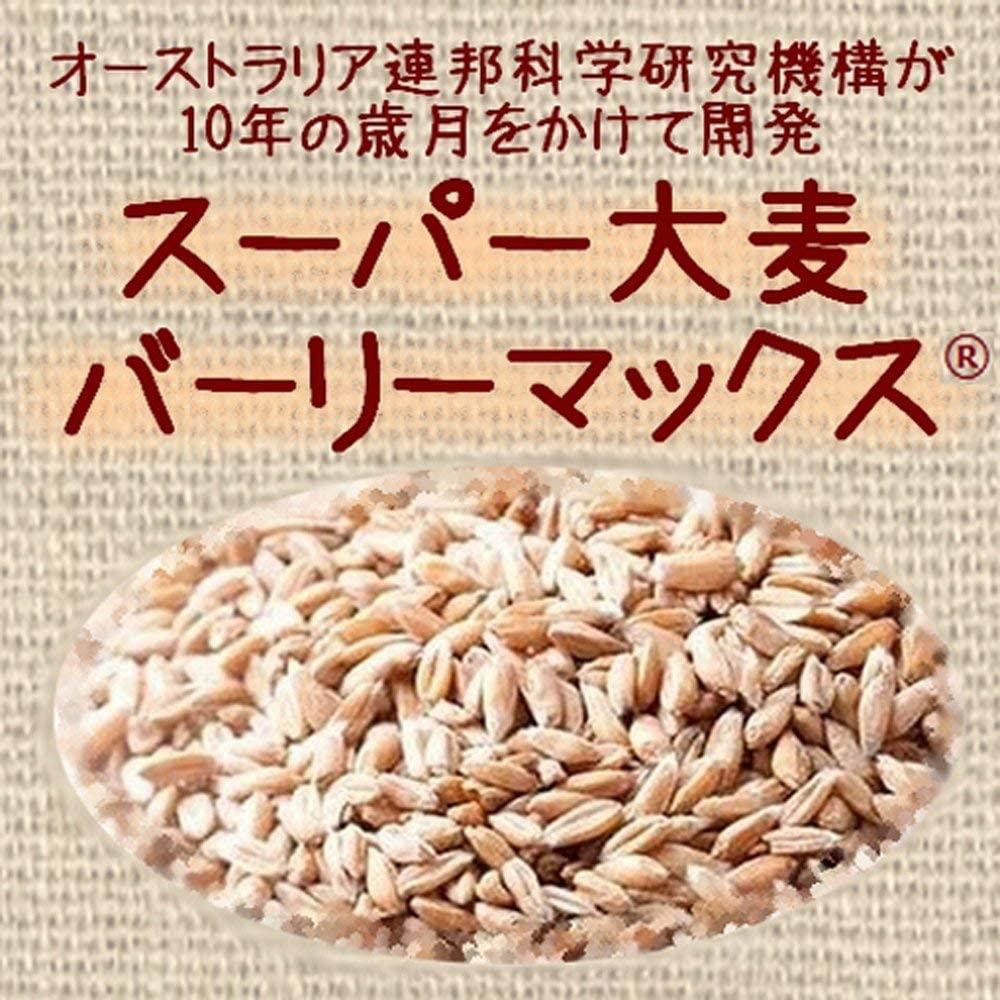 バーリーマックス入り雑穀ごはん 160g×6袋