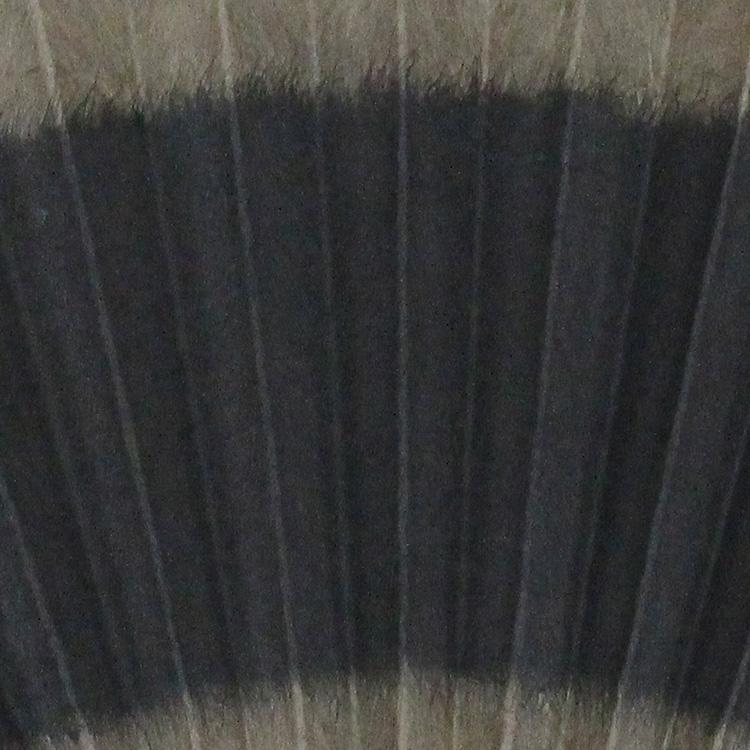 直営店限定 黒谷和紙 扇子セット (全6種類)