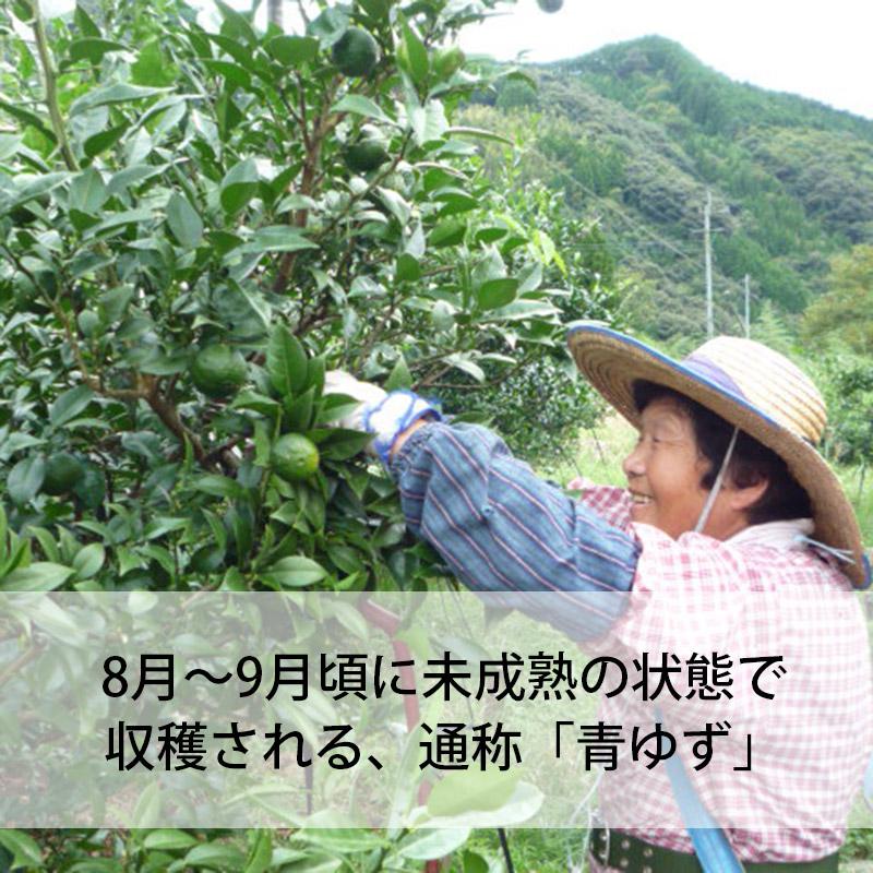 青ゆずこしょう/かぐらの里(40g)|国産(宮崎県産)
