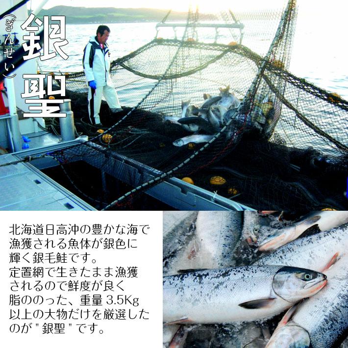 銀聖 新巻鮭半身切身 1.1kg