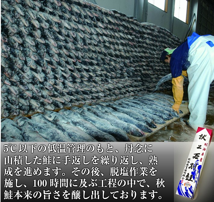 塩秋鮭姿切身(山漬け) 献上鮭 西別鮭