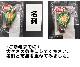 ★お取り寄せ★無添加干し柿(1個)