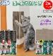 猫 つめとぎ 2枚 45x22cm 吸着 貼ってはがせる 壁を傷つけない 爪とぎ 繰り返し使用 ノリ跡が残らない 猫の好きな場所に設置  日本製