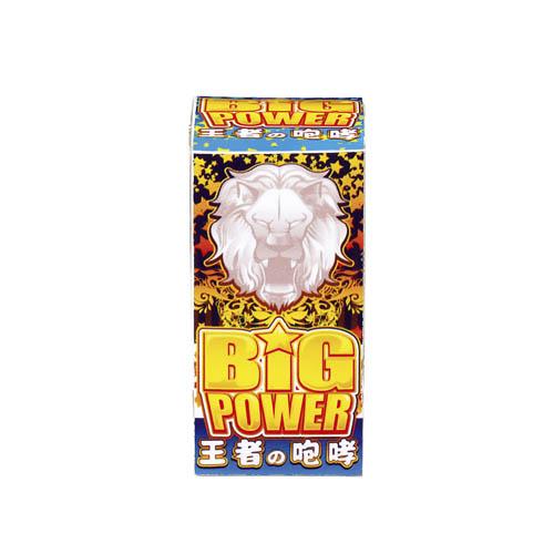 ビッグパワー No100