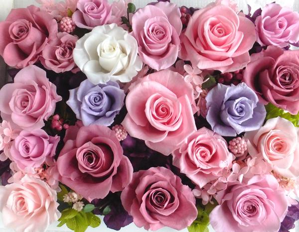 190306 チェリーブロッサム、ピンク、パ—プルの壁掛け(白) プリザーブドフラワー