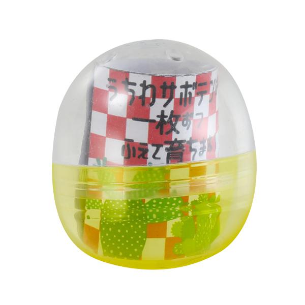 サボテン栽培カプセル ウチワサボテンMIX(ロット:30)