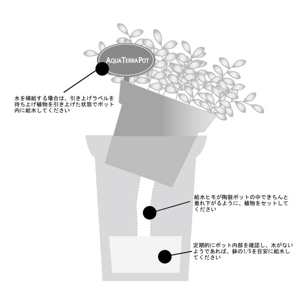 アクアテラポット 観葉ログ サファリ 4C(ロット:8)