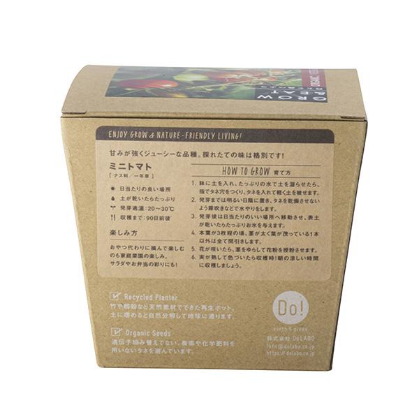 《期間限定5%OFF》G&E 栽培セットオーガニック ミニトマト(ロット:6)