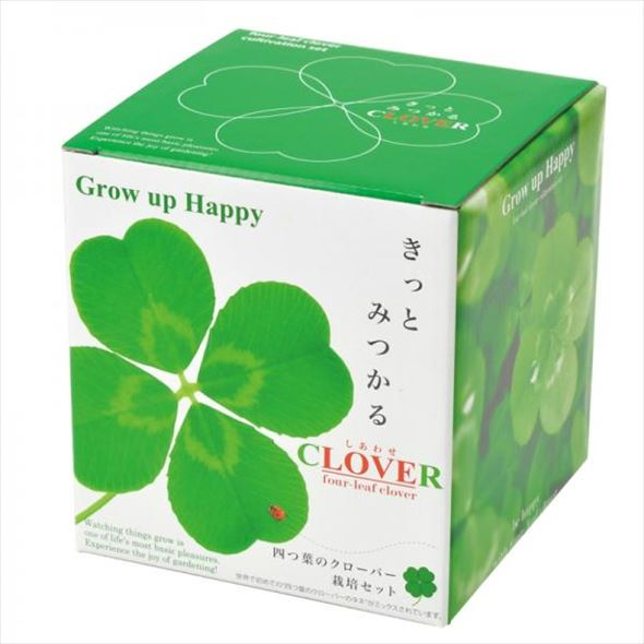 リニューアルオープン記念!幸せきっとみつかる 四つ葉のクローバー栽培セット Four-Leaf Clover