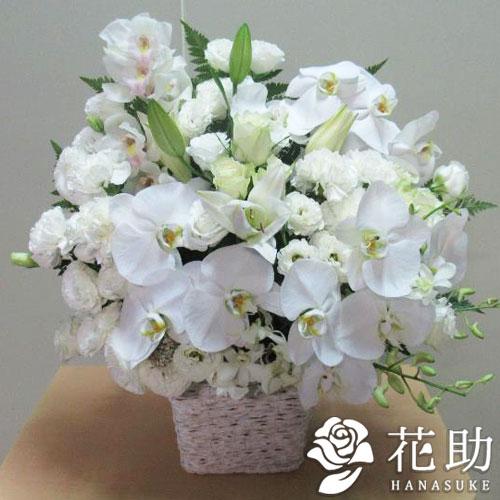 胡蝶蘭入りアレンジメント花 15000円