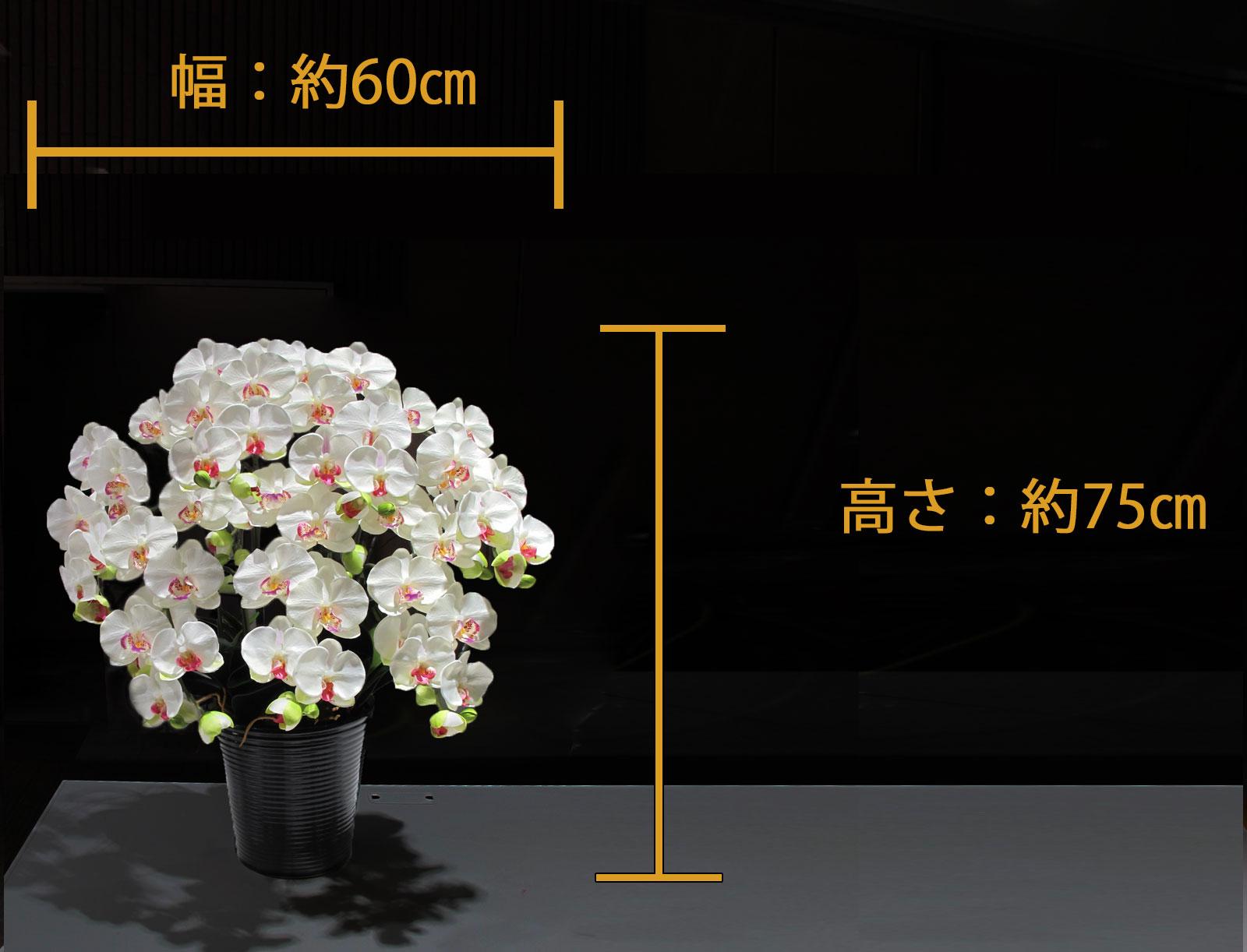 造花 光触媒 胡蝶蘭(小) 38,000円