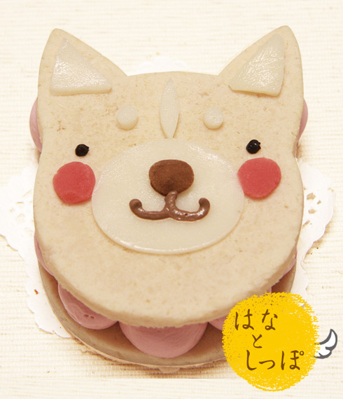 ワンバーグ発酵ケーキ 【スムースコートチワワみたいなタイプ】