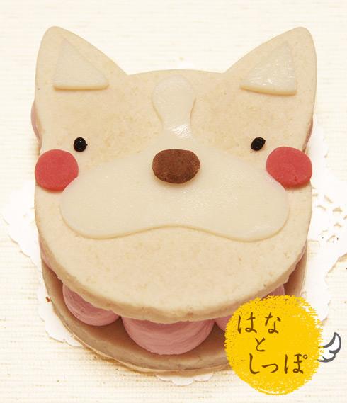 ワンバーグ発酵ケーキ 【フレントブルドッグみたいなタイプ】