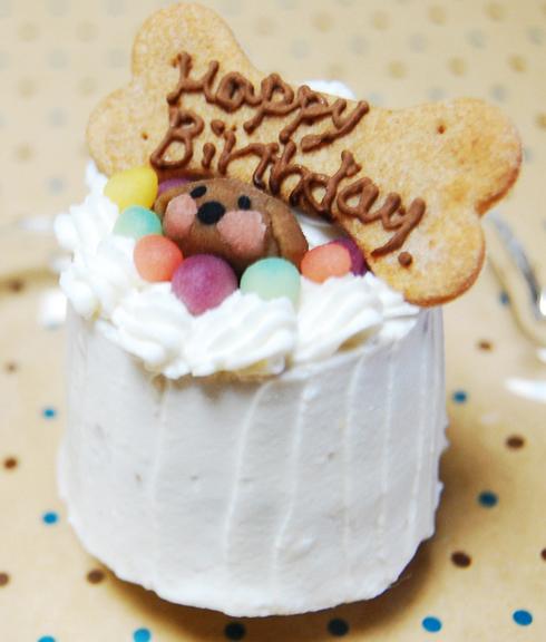 小型犬向け☆ハッピープチミート【お肉のプチケーキ】