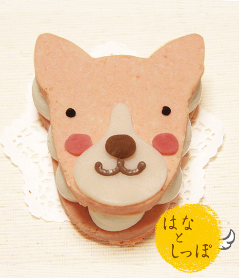 ワンバーグ発酵ケーキ 【イタリアングレイハウンドみたいなタイプ】