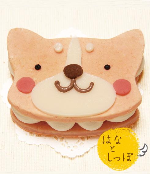 ワンバーグ発酵ケーキ 【ロングコートチワワみたいなタイプ】