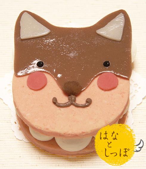 ワンバーグ発酵ケーキ 【柴犬みたいなタイプ】