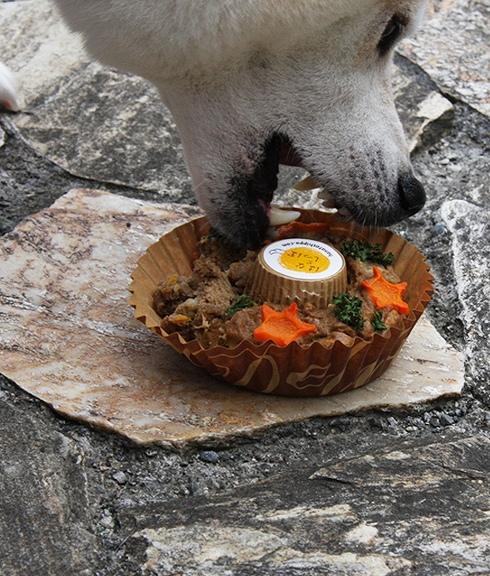 玄米ごちそうキッシュ【シーフード】