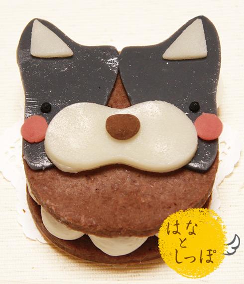 ワンバーグ発酵ケーキ 【ボストンテリアみたいなタイプ】
